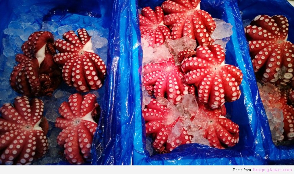 รู้จริงญี่ปุ่น_Tokyo_05 Tsukiji 06