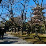 Tokyo_09 Ueno Park 03