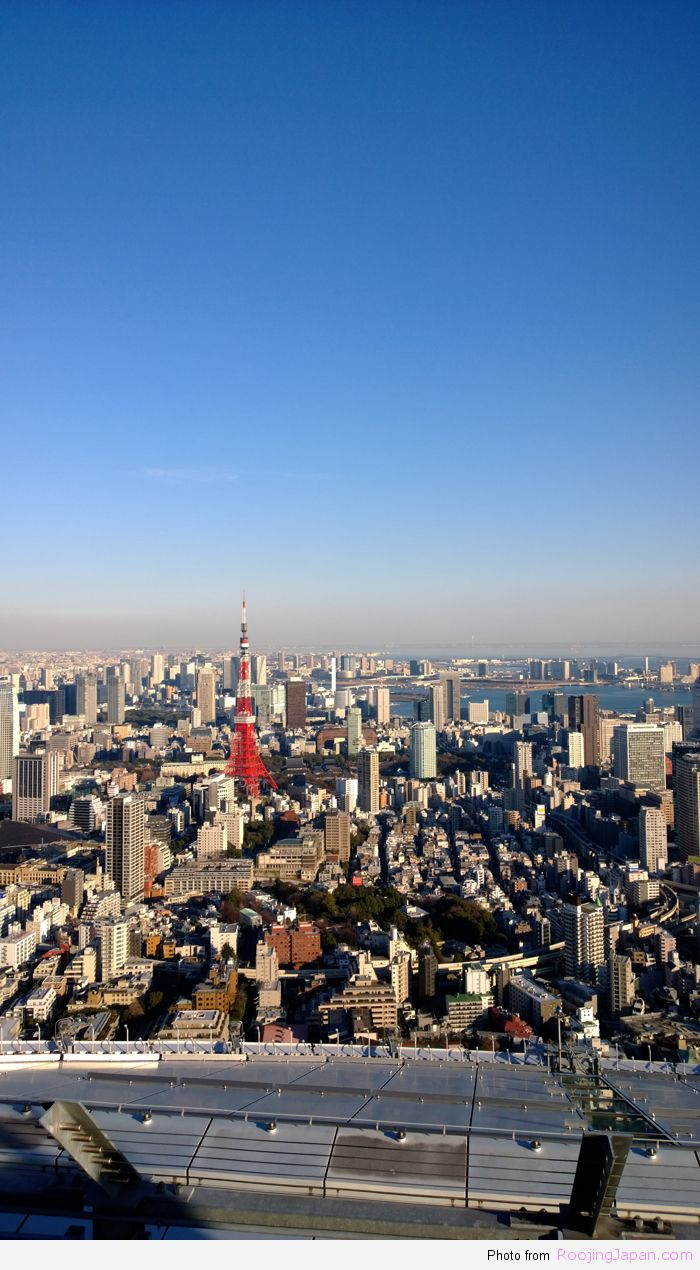 Tokyo_19 Tokyo City View 01