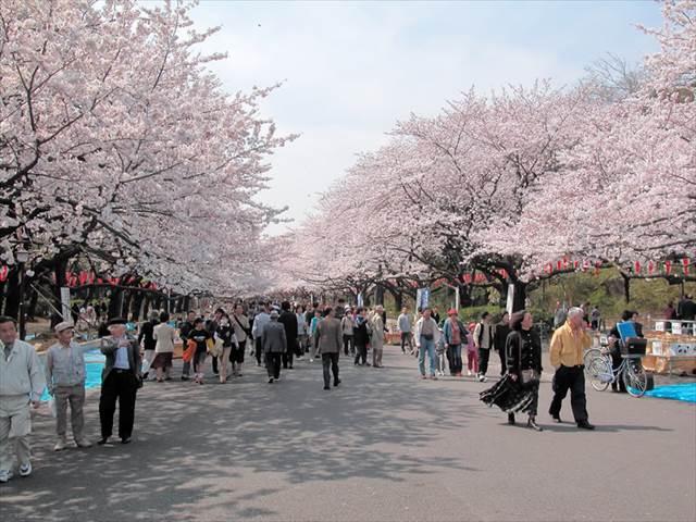 ueno-park-04-1